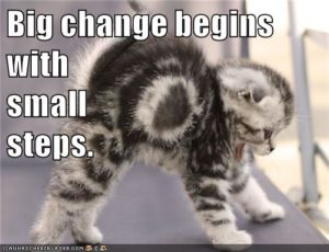 Big change begins with small steps